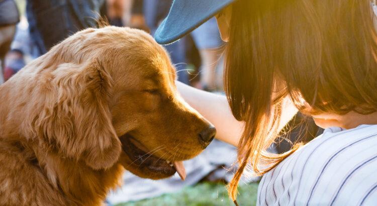 Woman petting smiling dog