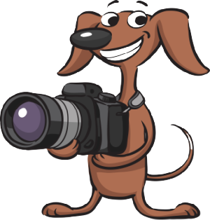Cute cartoon dog holding camera