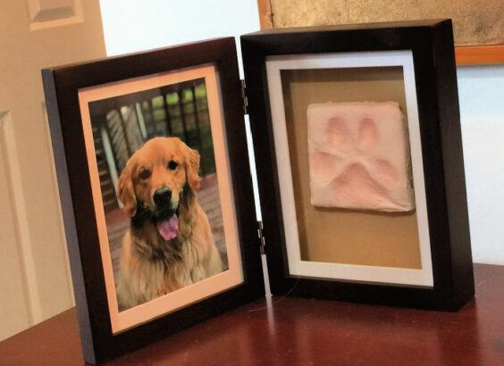 Double frame with Dog photo on left and impression of dog's paw print on the right