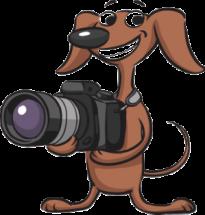 Cute cartoon dog holding camera